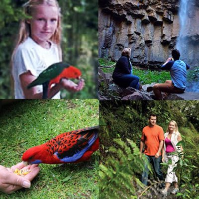 Queen Mary Falls Activities